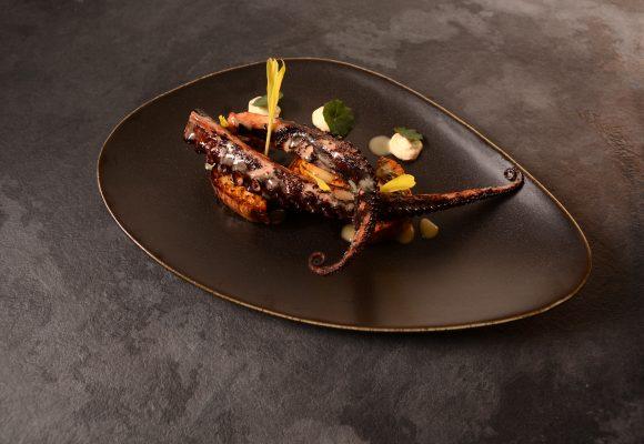 Октопод на плоча, гарниран с микс от свежи зелени салати и сос Ладолемоно