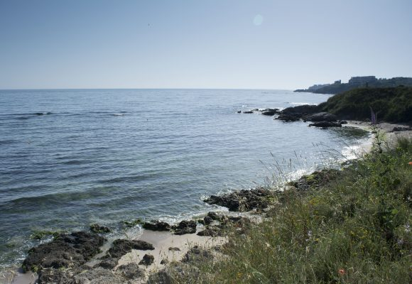 beach-new-3