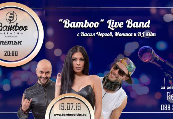 bamboo19-07-20-00 копия