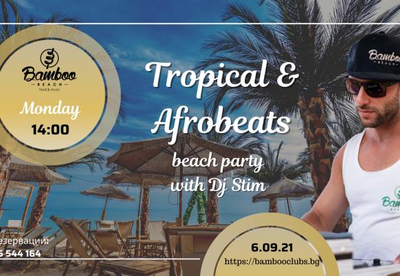 Tropical 6.09 bb